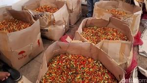 Harga Rawit Merah Diprediksi Bisa Turun dari Rp 130.000 jadi Rp 15.000