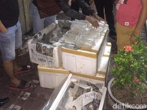 Polda Jatim Gagalkan Penyelundupan 24.750 Bayi Lobster