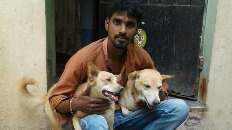 Heroik! Dua Anjing ini Bantu Tangkap Penjahat di India