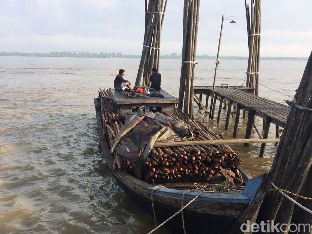Polisi Tangkap Kapal Pembawa Kayu Jarahan yang akan Diselundupkan