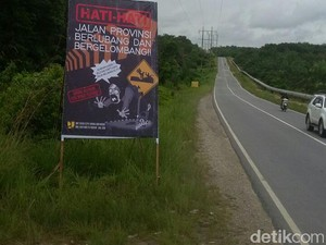 Jalan Berlubang di Siak Sudah Menelan Korban Jiwa