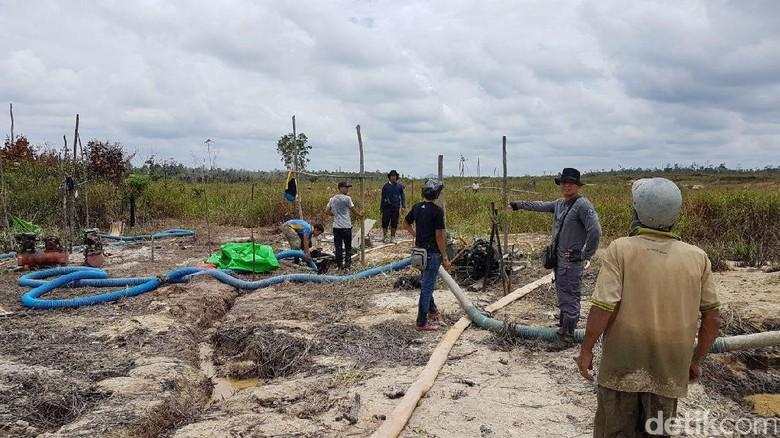 Tanah Runtuh, Penambang Emas di Jambi Terjebak di Lubang Tambang