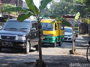 Jalan Penghubung Kecamatan Rusak Berat, Warga Tanam Pohon Pisang