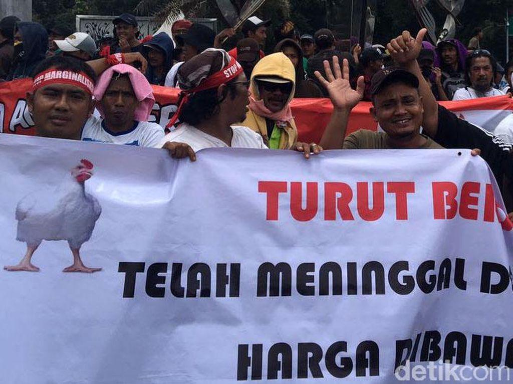 Peternak Minta Pemerintah Lakukan Ini Agar Harga Ayam Tak Jatuh
