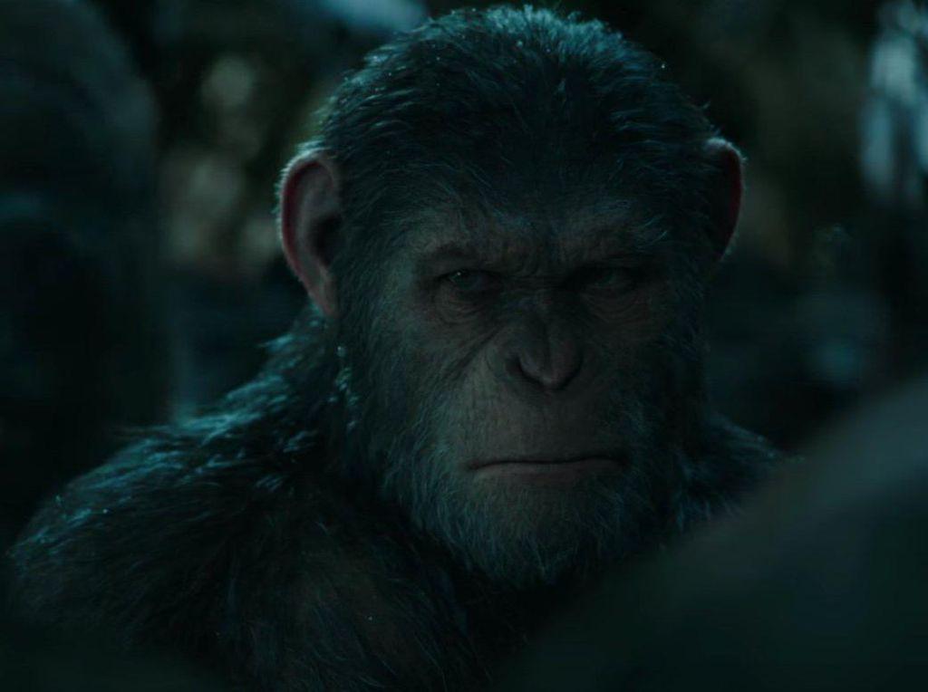 Di Reboot Planet of The Apes, Andy Serkis Bicara Peran Sebagai Kera