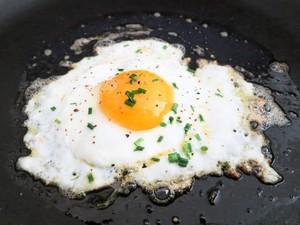 Telur Ayam yang Gurih Enak Ternyata Punya 10 Fakta Menarik Ini (1)
