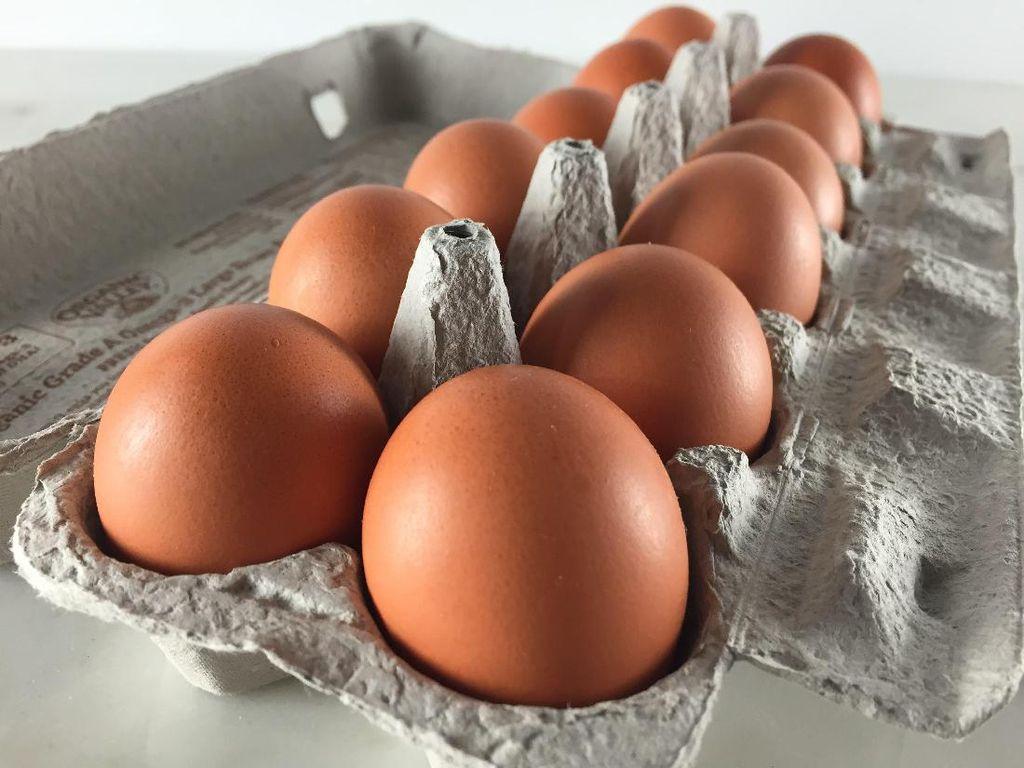 Harga Telur Ayam di AS Meroket 180% Gara-gara Panic Buying