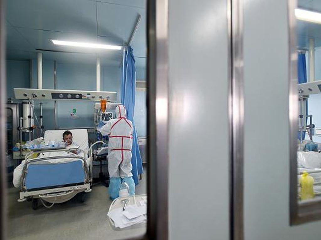 Dunia Waspadai Penyakit Baru, 2 dari 3 Infeksi Ditularkan oleh Hewan