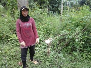 Ini Semak Belukar Tempat Bayi Ajaib Dibuang di Cianjur