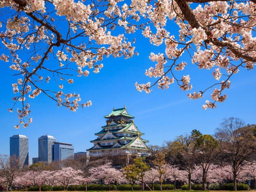 Lagi di Osaka, Ini 5 Destinasi yang Bisa Didatangi Ahok