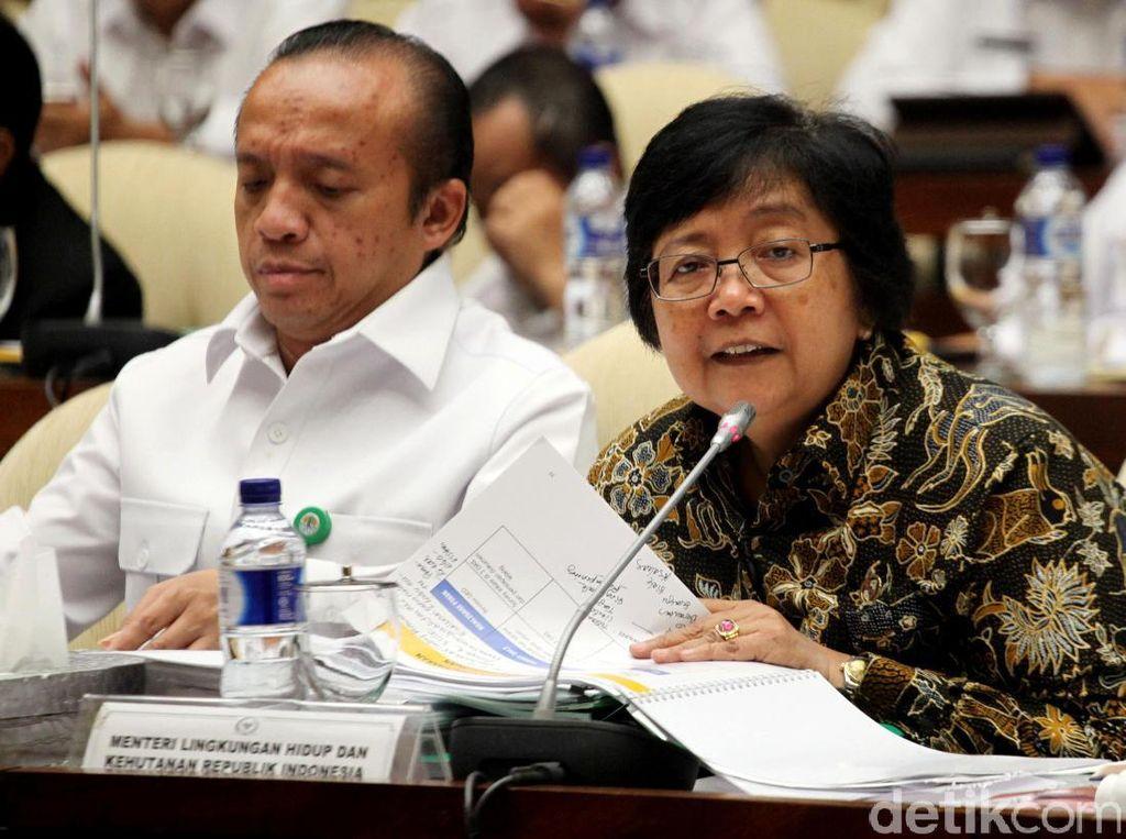 Menteri LHK Raker Bersama Komisi IV DPR