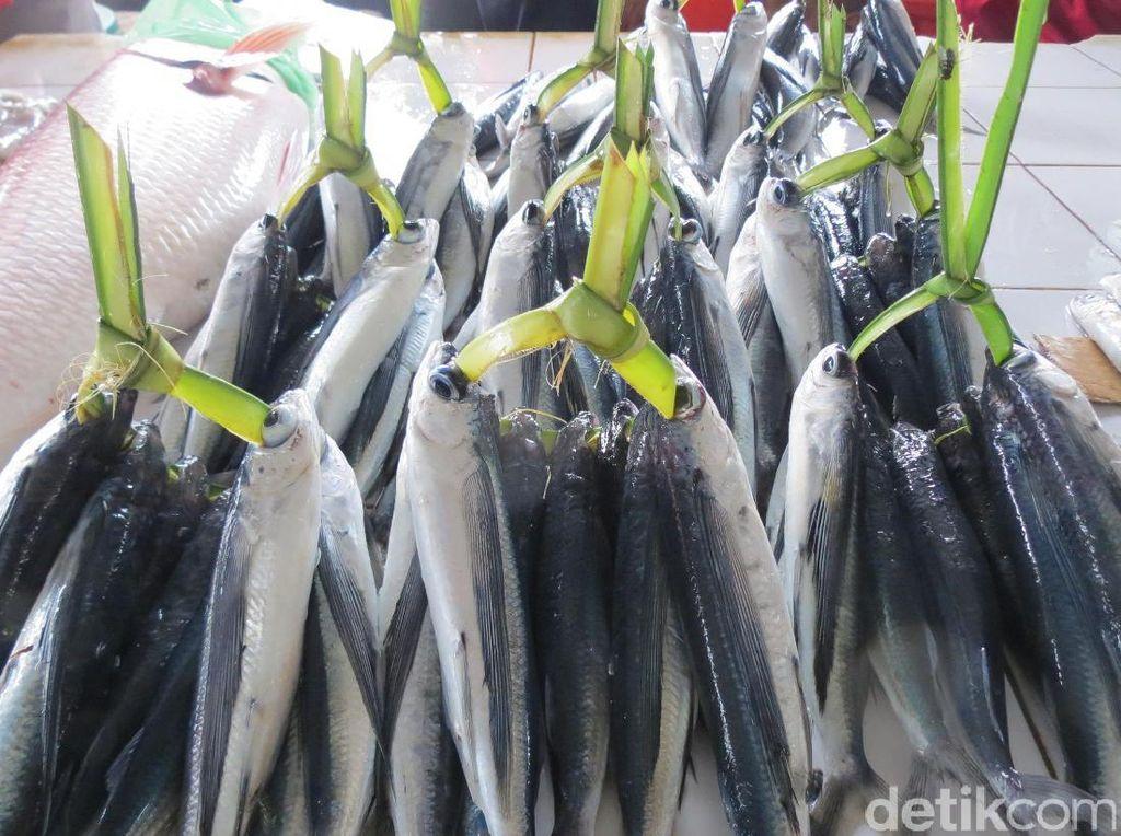 Agar Anak Tak Kerdil, Pemerintah Imbau Ibu-ibu Berikan Lauk Ikan