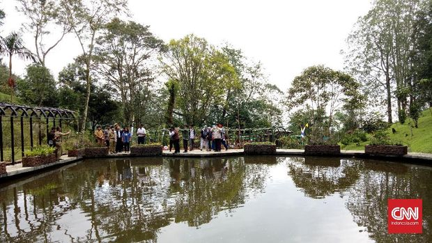 Taman Liana di Kebun Raya Cibodas. (CNN Indonesia/Deddy S)
