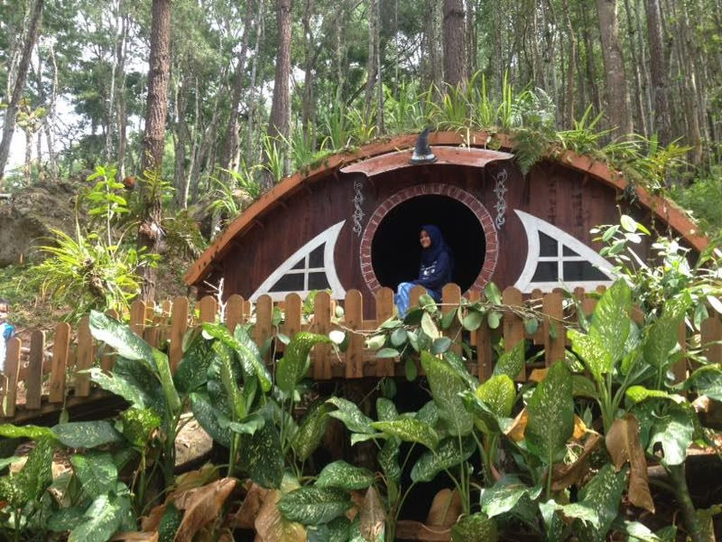 Celebrity on Vacation: Main ke Rumah Hobbit di Yogyakarta