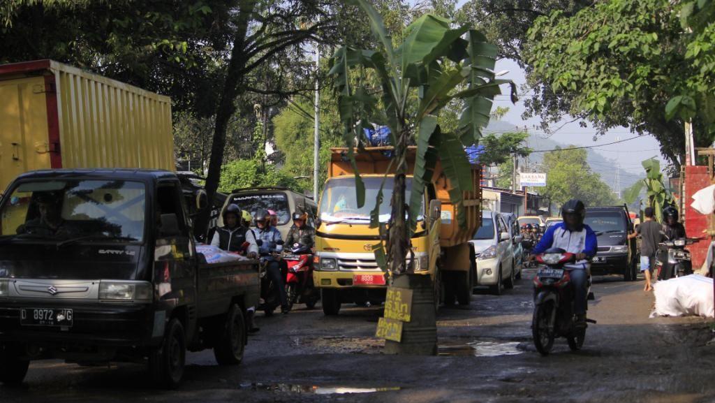 Respons Bupati Bandung Soal Jalan Rusak Ditanami Pohon Pisang