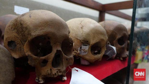 Pada situs Sangiran telah ditemukan sebanyak sekitar 100 fosil manusia purba (Homo erectus) atau 50% lebih temuan fosil Homo erectus di dunia, dan lebih dari 60% yang ditemukan di Indonesia.