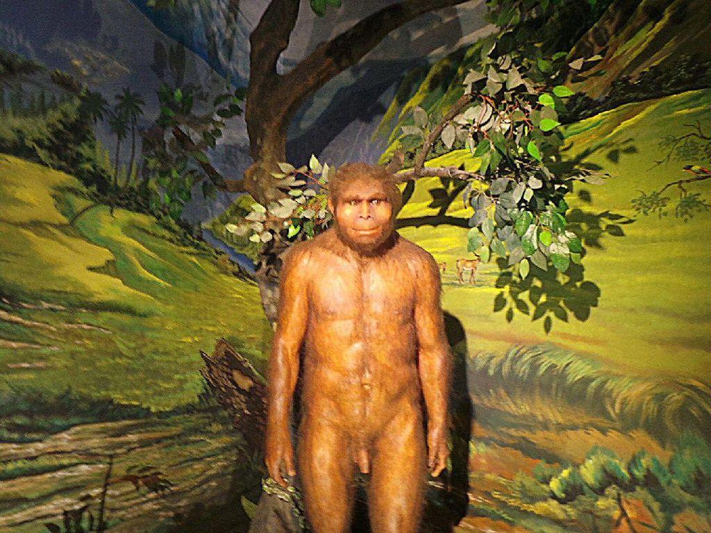 Manusia Purba dalam Mitos Jawa: Raksasa yang Dikalahkan