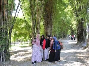Ke Surabaya, Jangan Lupa Mampir ke Hutan Bambu