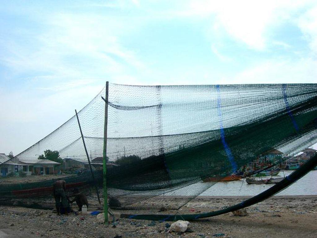 Trenggono Kaji Ulang Penggunaan Cantrang yang Dilegalkan Edhy Prabowo