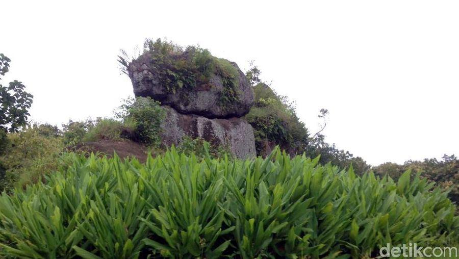 Setelah perjalanan yang penuh perjuangan, akhirnya sampai juga di Betoh Soon. Ada 7 deretan batu besar yang berdiri berjajar di situs megalitikum ini (Narulita/detikTravel)