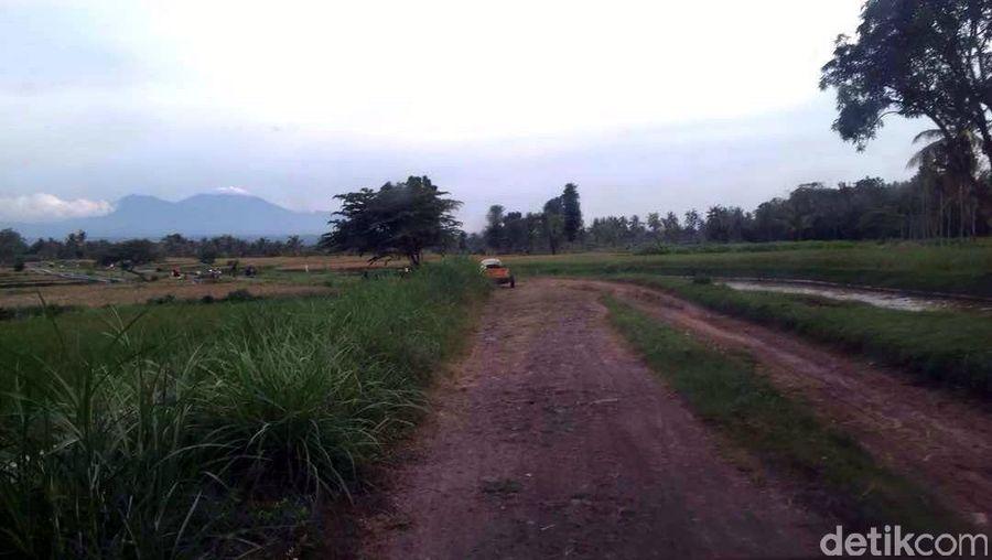 Selama perjalanan, hiburannya hanya melihat sawah dan kebun menghijau yang berada di kanan dan kiri jalan. Ada juga hutan dan sungai yang mengalir di tepinya (Narulita/detikTravel)