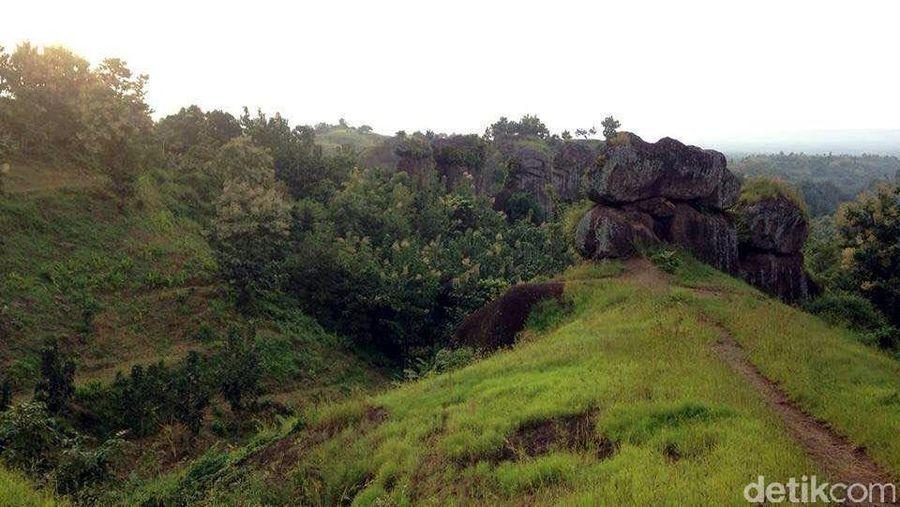 Susunan batu megalitikum ini letaknya ada di dasar lembah. Entah berapa meter tinggi dari Stonehenge van Java ini. Di atas batu yang tegak ini, masih ada batu lain yang berukuran besar di atasnya, sepeti sengaja ditumpuk (Narulita/detikTravel)