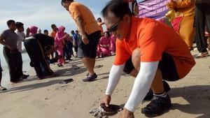 Kapolda Babel Lepaskan 100 Penyu di Pantai Tikus Emas