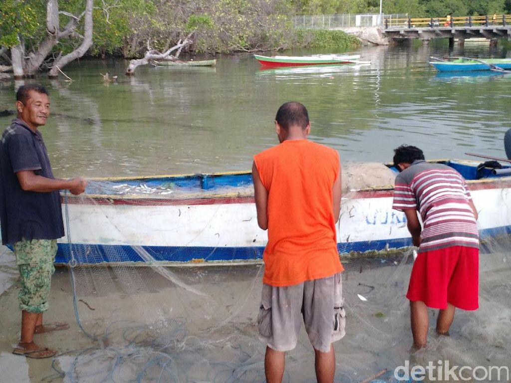 Pukat Harimau Dilarang, Nelayan Aceh: Ikan Sekarang Ada Lagi