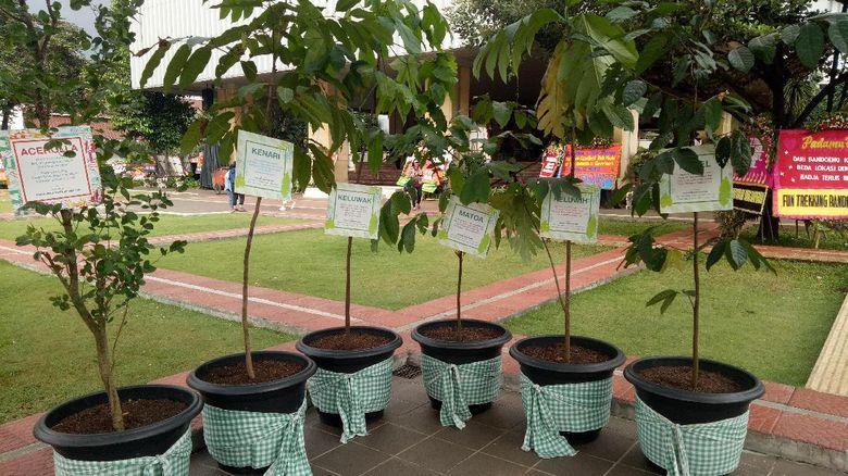 Bukan Lagi Karangan Bunga, Warga Kini Kirim Pot Tanaman untuk Ahok
