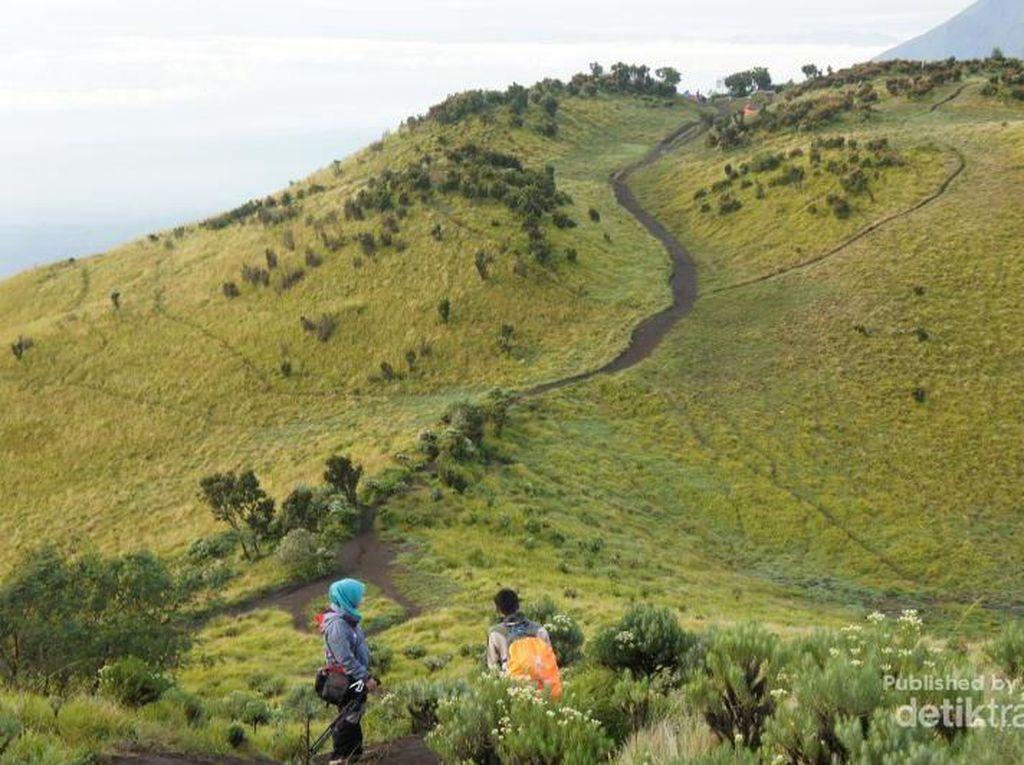 Ini 10 Taman Nasional Paling Populer di Indonesia