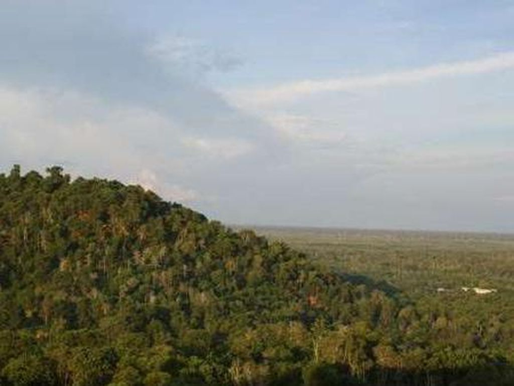 Ibu Kota Pindah ke Kalimantan, Bagaimana Nasib PNS Pusat?
