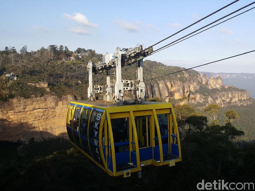 Lihat Kanguru Selfie & Naik Kereta Gantung Tertinggi, Wow Banget!