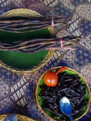 Obat Kuat Pria Ala Raja Ampat: Cacing Laut