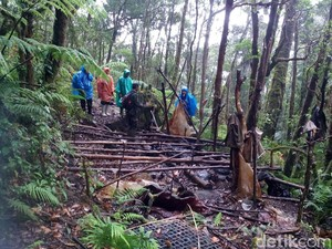 Balai Besar Pangrango Jelaskan Kerusakan Hutan Akibat Buru Cacing