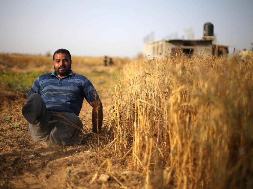 Cacat, Pria Asal Palestina Ini Tetap Jadi Relawan