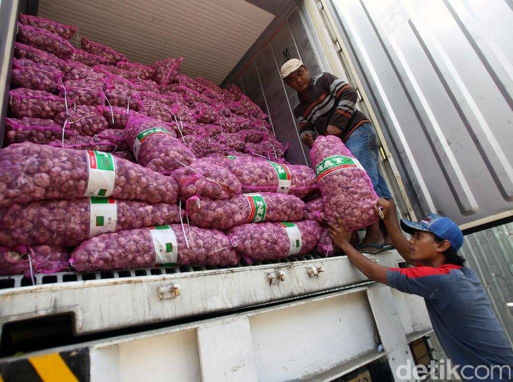 Soal Polemik RIPH Impor Bawang, Ini Respons Badan Karantina