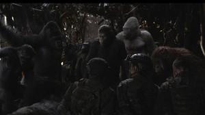 War of the Planet of the Apes Bukan Akhir untuk Waralaba