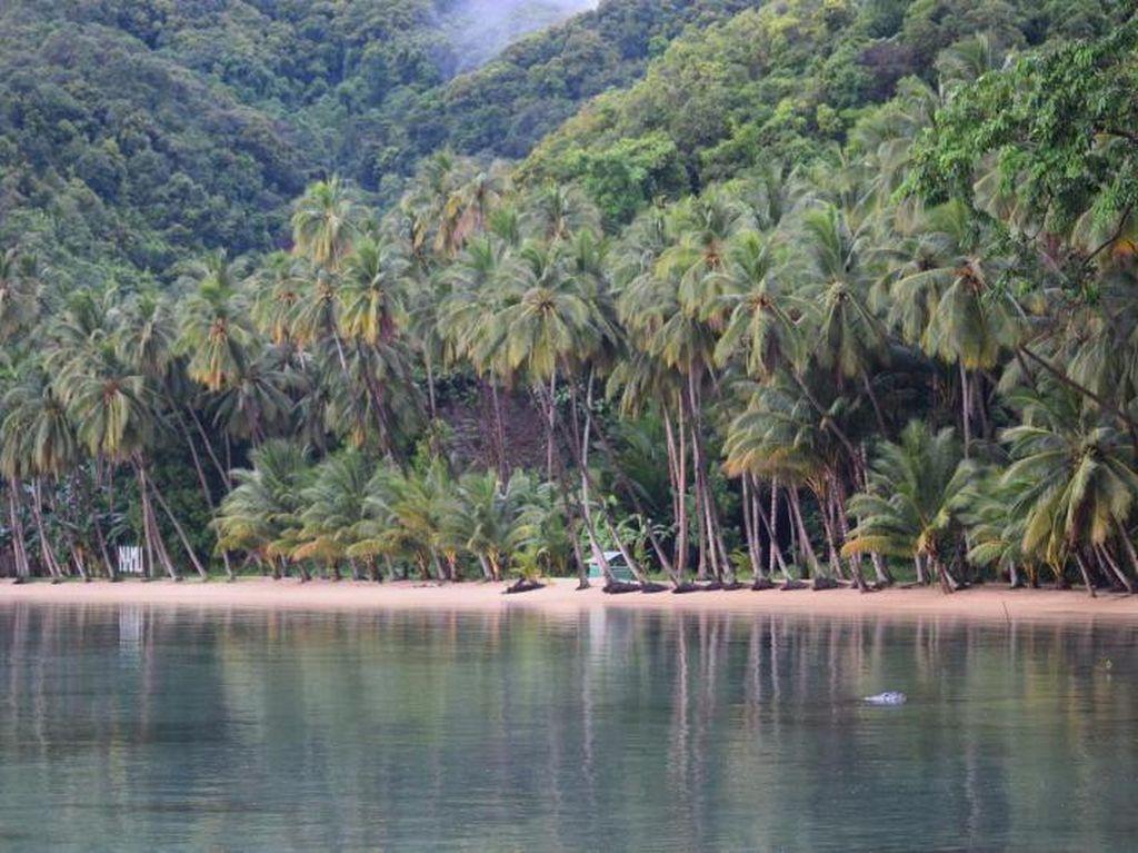 Sektor Pariwisata di Sulawesi Tenggara Mulai Bangkit