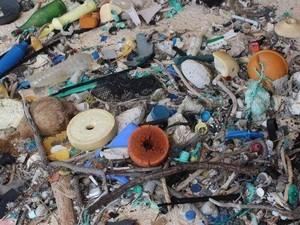 Pulau Warisan Dunia di Pasifik Selatan Penuh Sampah