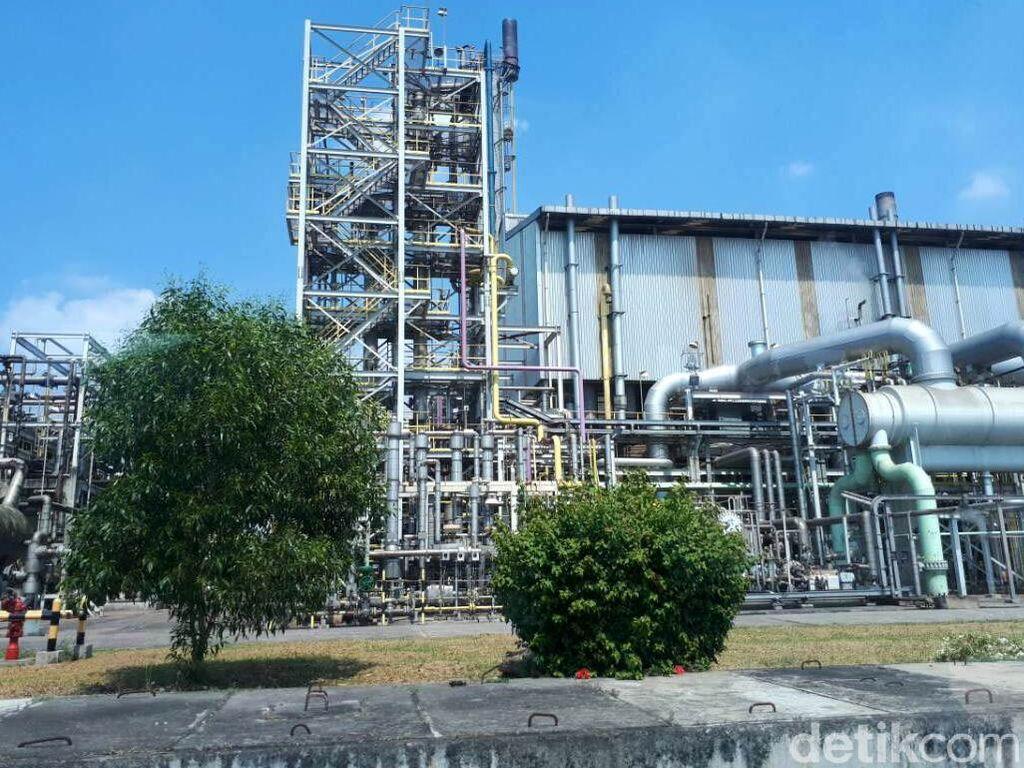 Aceh Mau Dibangun Pabrik Pupuk Senilai Rp 1 Triliun