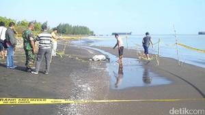 Mayat Terbungkus Karung Ditemukan di Pantai Kabupaten Tegal