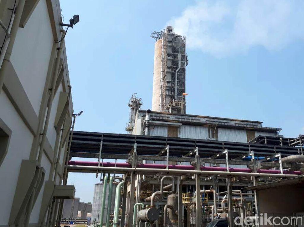 Harga Gas Dipangkas, Pabrik Pupuk Hemat Rp 153 Miliar