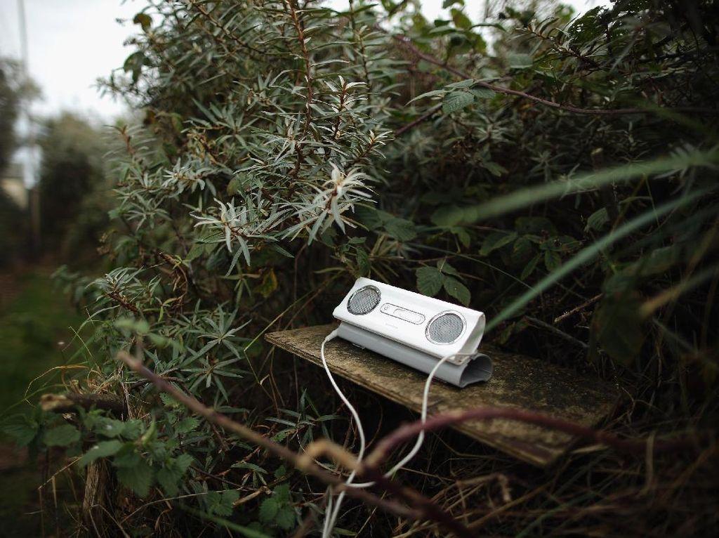 Hilangnya MP3 Belum Tentu Bisa Hapus Pembajakan