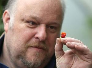 <i>Dragons Breath</i>, Cabai Super Pedas yang Bisa Digunakan sebagai Obat Bius
