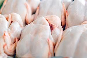 Minggu Ini Mau Belanja Daging Ayam? Ikuti 4 Panduan Ini