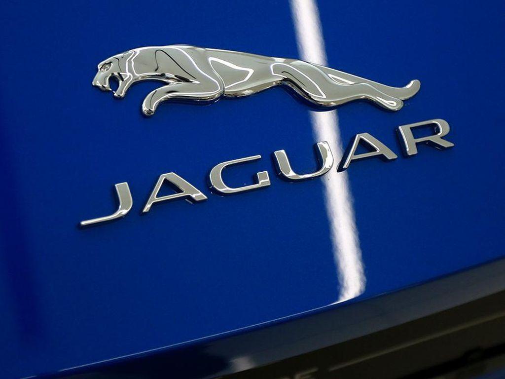 Jaguar Land Rover Gagal Dapat Dana Bantuan Darurat dari Pemerintah