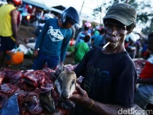 Pasar Gelap Merauke Ramai Jual Beli Kanguru Papua
