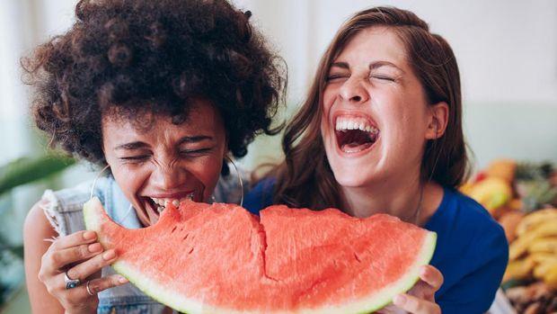 ilustrasi semangka