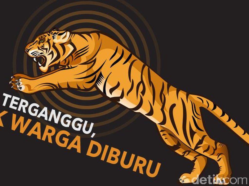Harimau Sumatera Bukan Teroris