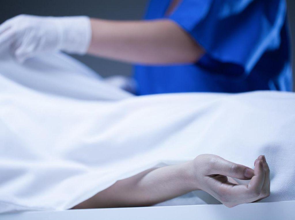 Jenazah Nenek Sebatang Kara di Sulsel Baru Ditemukan Usai 6 Hari Meninggal